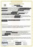 Сертификат соответствия Техничекому регламенту Таможенного Союза на Межсистемное устройство связи